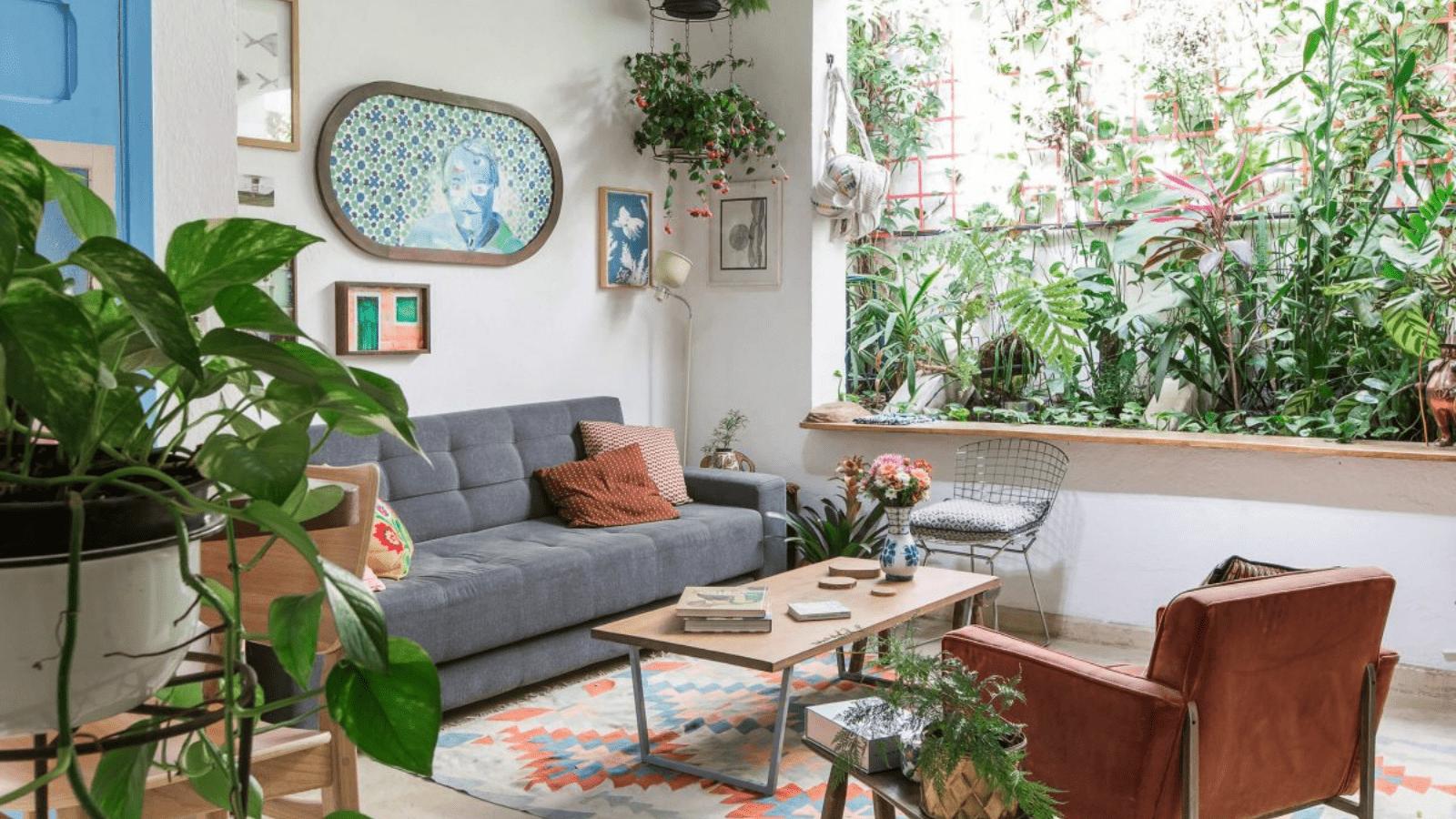 6 plantas que protegem sua casa